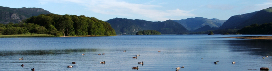 Ducks on Derwentwater